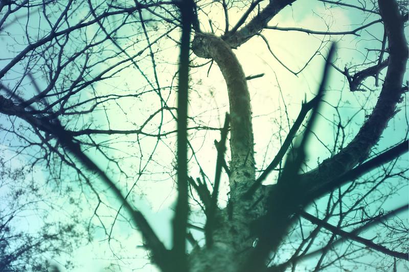 blur-dreamy-texture-texturepalace-9