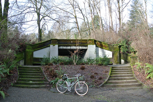 January Picnic - NFE at Colman Park