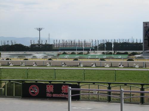 京都競馬場のスワン花壇