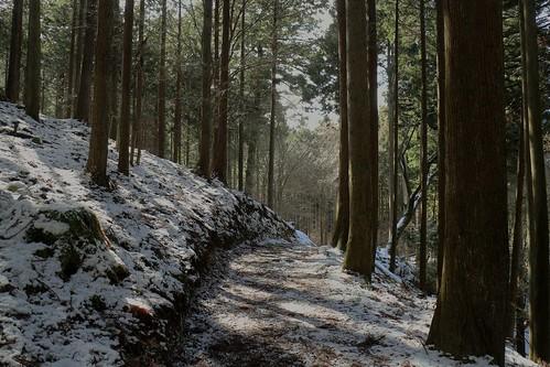 snow frozen kyoto path traditional zen 京都 日本 ohara kioto 雪 japon giappone 禅 giapponese japonés 冬景色 winterscene 大原 魚山 声明 登山道