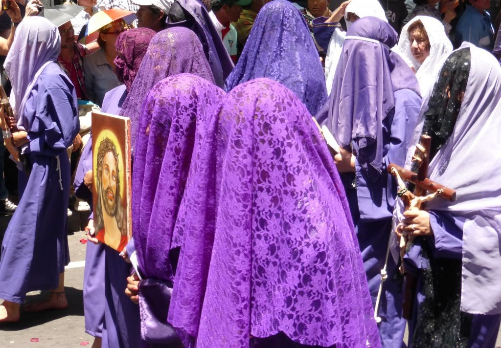 Veronicas Covered In Purple Veils
