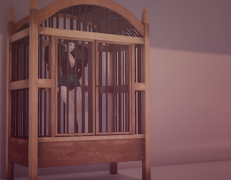 Caged Bird 3