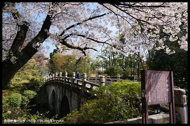 2013.04_日本京都_大谷本廟 桜