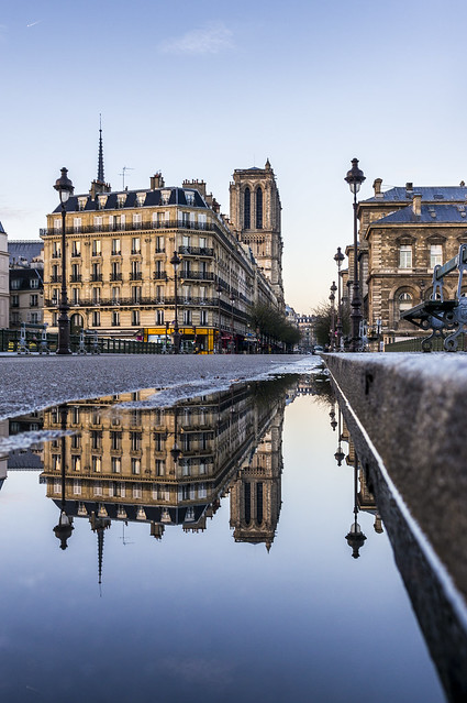 Notre-Dame in a puddle
