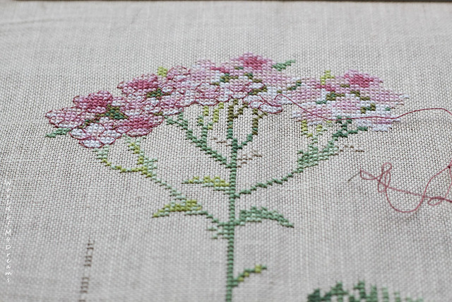 magic of backstitch