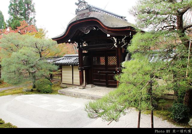 京都-永觀堂107
