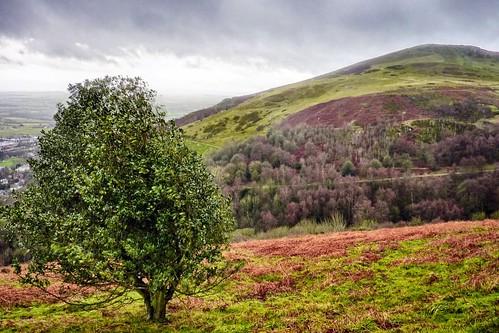 Malvern Hills - Worcestershire Beacon