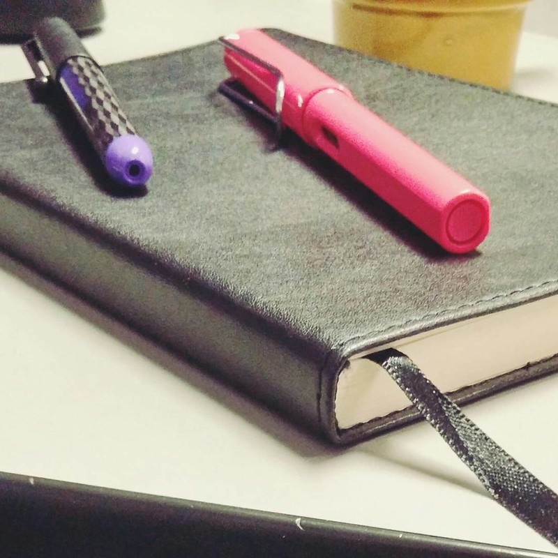 this journal  #journal #fountainpen #Lamy #Pilot
