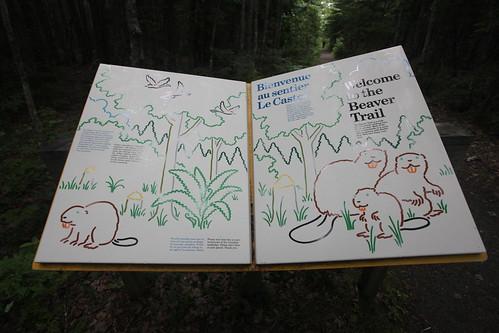park nationalpark parks beaver trail nationalparks kouchibouguac kouchibouguacnationalpark