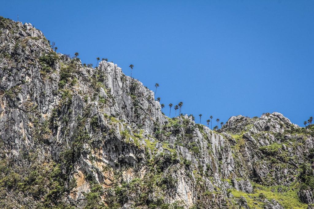 Hiking Doi Chiang Dao in Chiang Mai