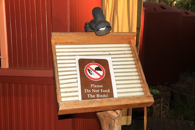 澳洲昆士蘭Undara Experience-請勿餵食鳥類標示-20141117-賴鵬智攝
