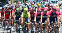 Tour Down under 2016