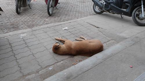 Thailand-0073