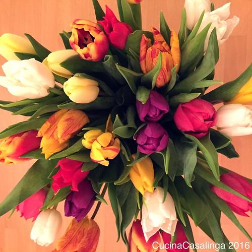 rgmuc Blumen