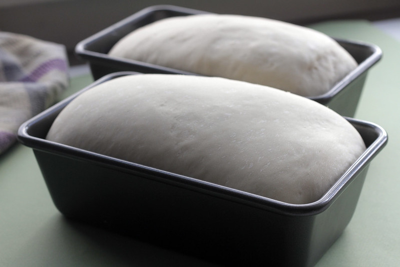 Risen loaves