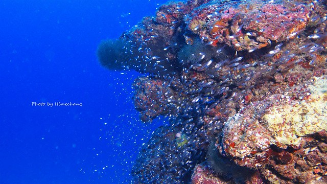 水深30mもエンリッチド・エアタンクだと楽に感じます♪