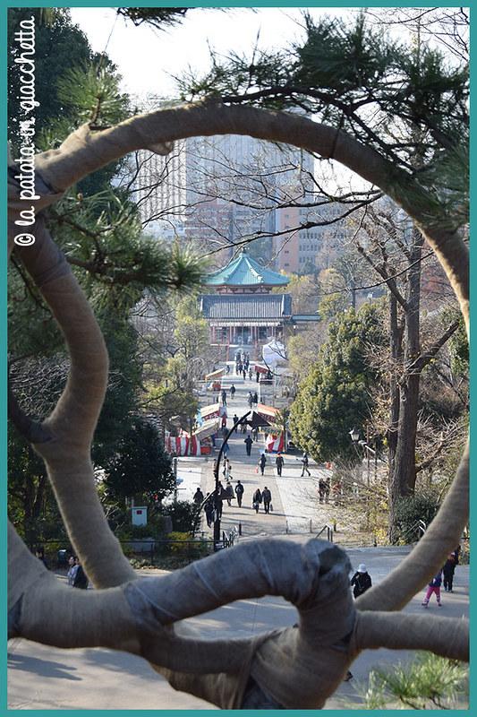 Itinerario-Giappone10