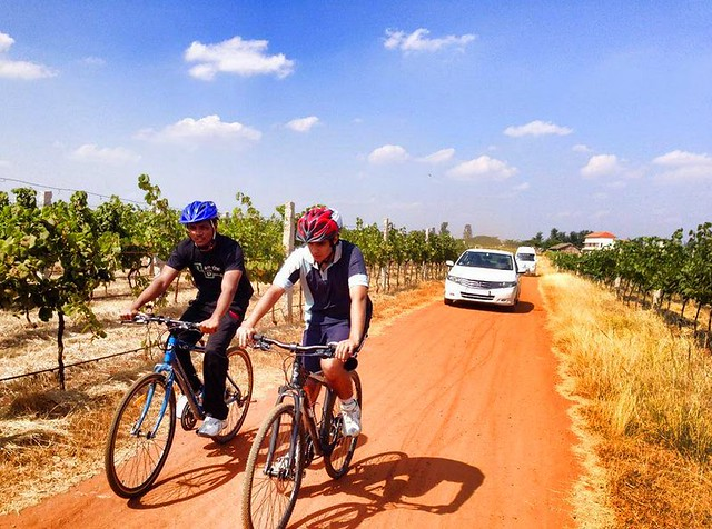 Cycling & Art of Wine Making Bangalore