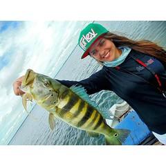 Mais uma bela captura de uma bela pescadora. @joyyteixeira com um tucuna azul fisgado com camarão artificial. #pescaamadora#pesqueesolte #baitcast #pescaesportiva #tucunare #pavone #pavon #peacock #peacockbass #flyfishing #fish #bassfishing #bass #pescado