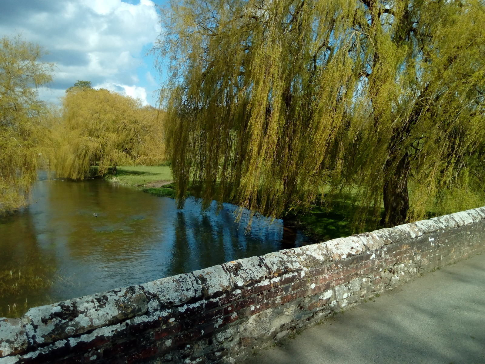 Great Stour at Godmersham