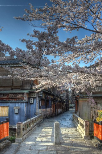 Gion-Shirakawa, Kyoto on APR 06, 2016 (5)