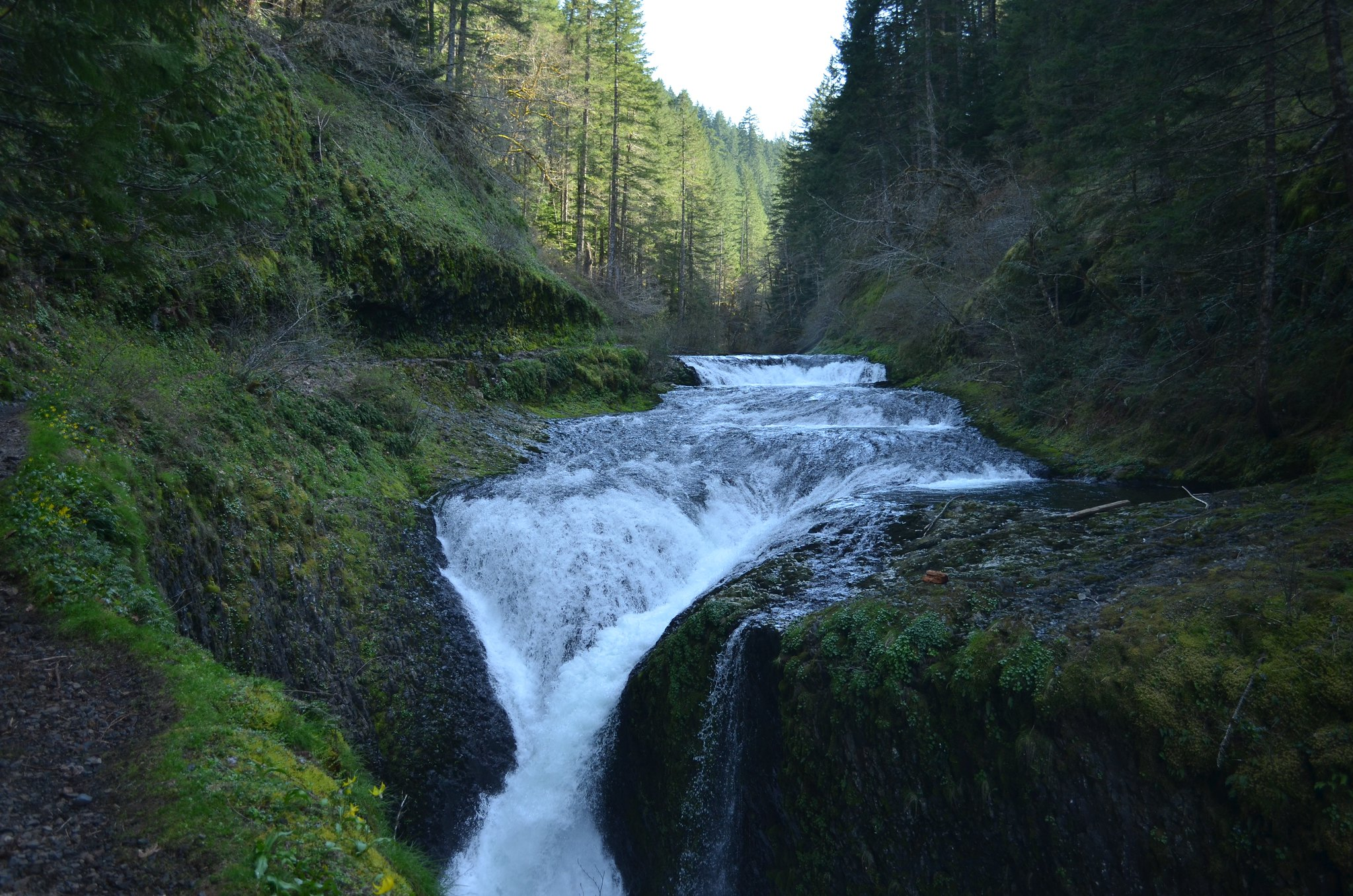 Eagle Creek Falls