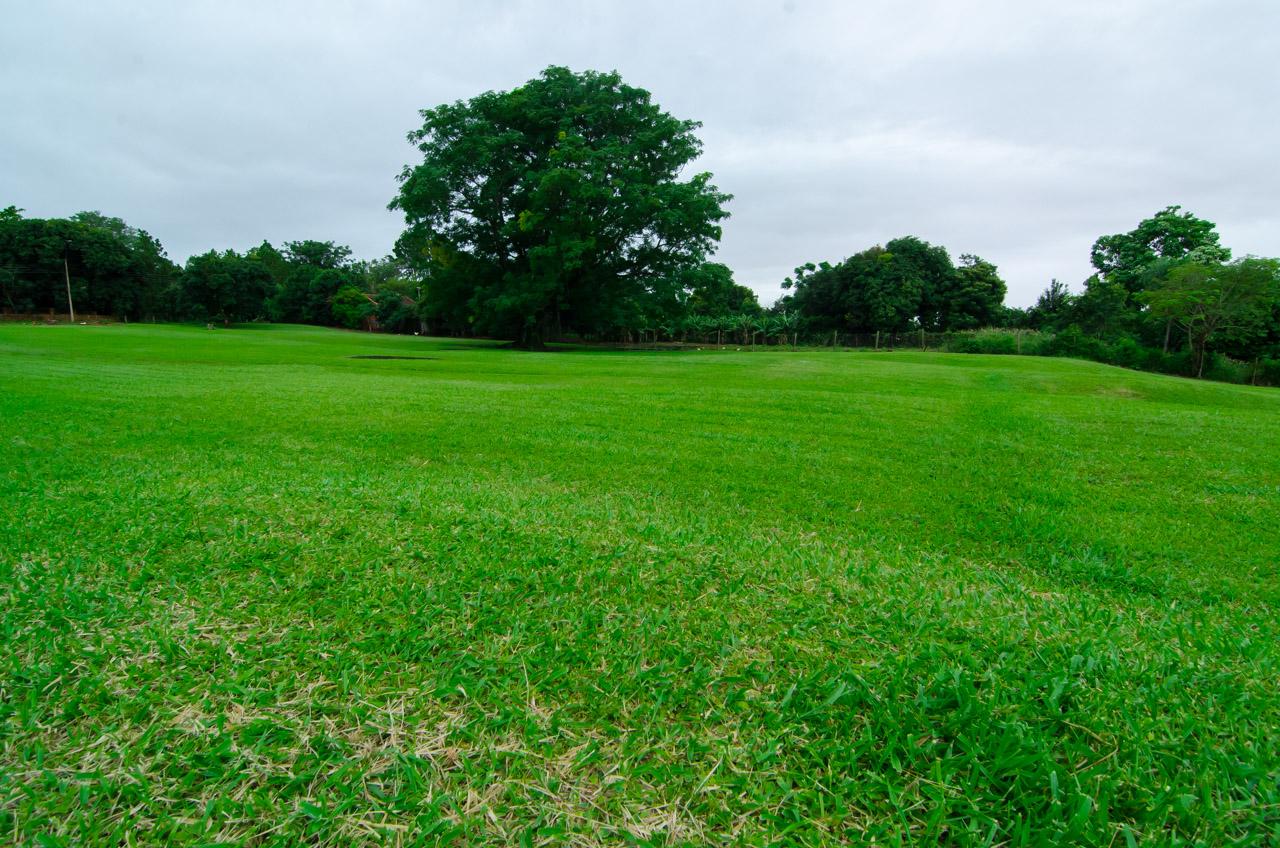 Naturaleza verde y renovada es vista en los patios de las Ruinas Jesuíticas de San Cosme y Damián. (Elton Núñez)
