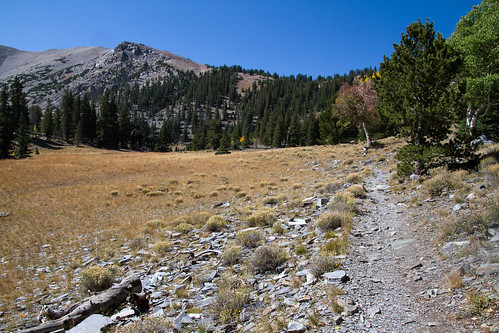 mountain nps hiking nevada wheelerpeak peakbagging greatbasinnationalpark getoutside
