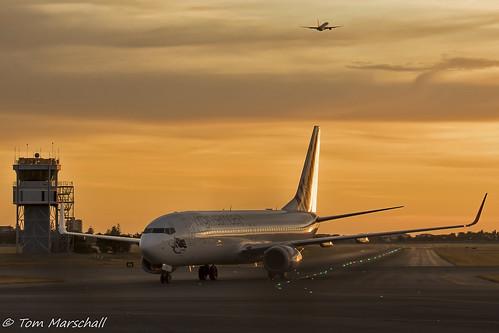 B738 - Boeing 737-8FE