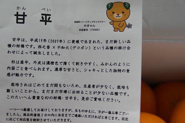 ふるさと納税 八幡浜市 国安青果の甘平_03