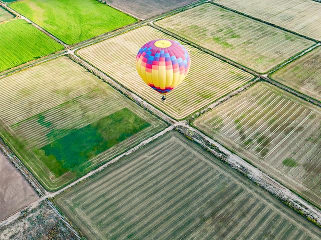 Hot Air Balloon And Field