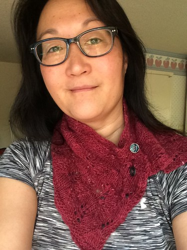 HKF buttoned cowl