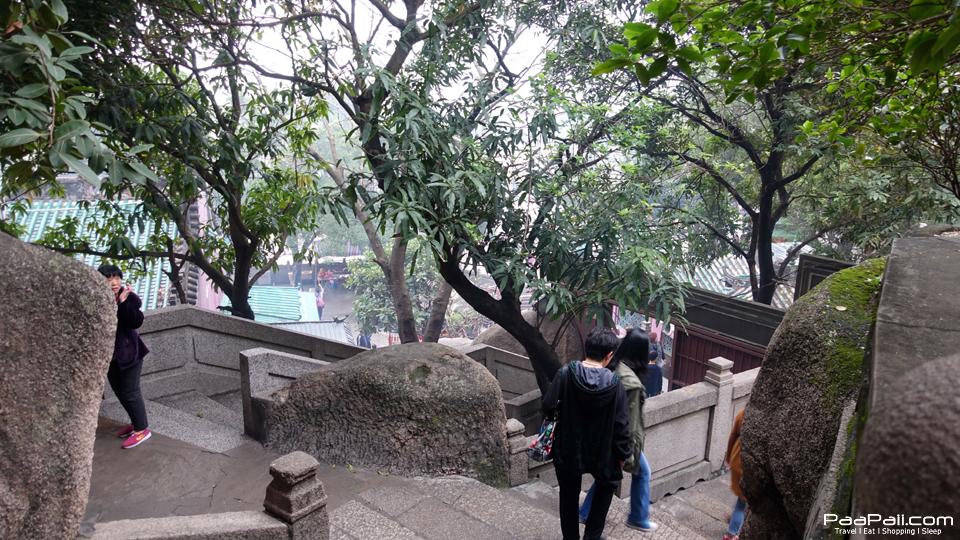 Macau (39)