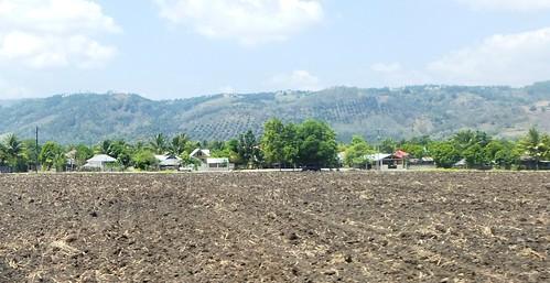 P16-Negros-San Carlos-Dumaguete-Route (39)