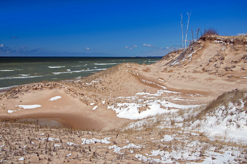 The Foredunes and Lake Michigan
