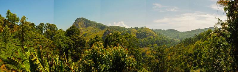 P3241488 Pano Vagamundos16 Sri Lanka Ella