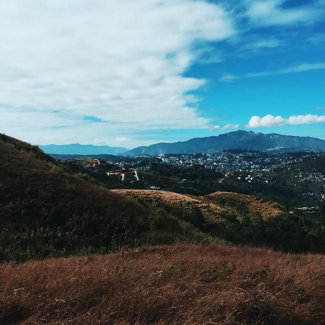 Azalea - Baguio