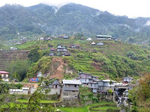 P16-Luzon-Mayoyao-Terrasses (15)