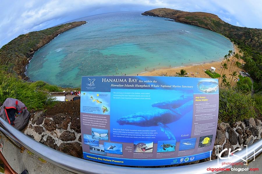 Hawaii_0199