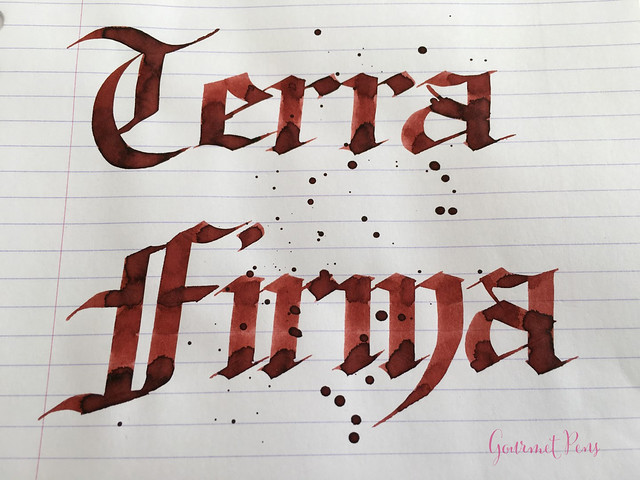 Ink Shot Review Franklin-Christoph Terra Firma @1901FC (6)