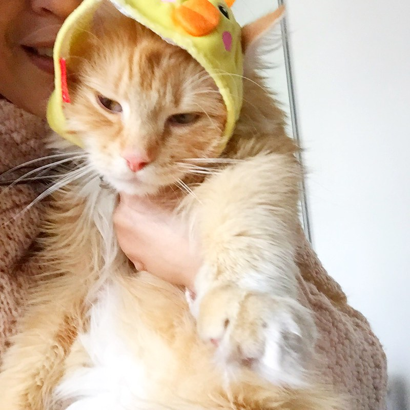 Did I like celebrating and wearing Easter's hats? Not so much!