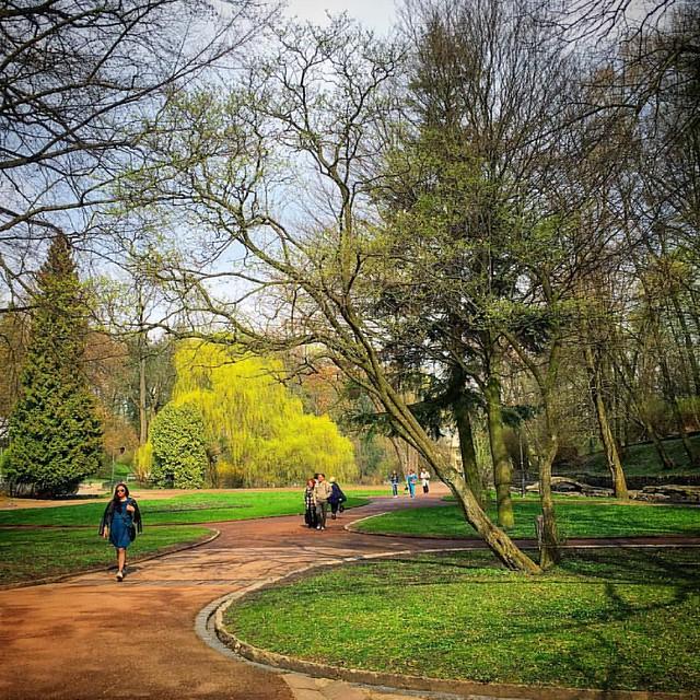 #lviv #ukraine #lvivia #ualviv #spring #spring2016 #park #nature #lviving #lvivgram #lvivingram #lvivblog #lvivcity #nature #lemberg #львів #львов #україна #украина #ilovelviv #стрийськийпарк #sky