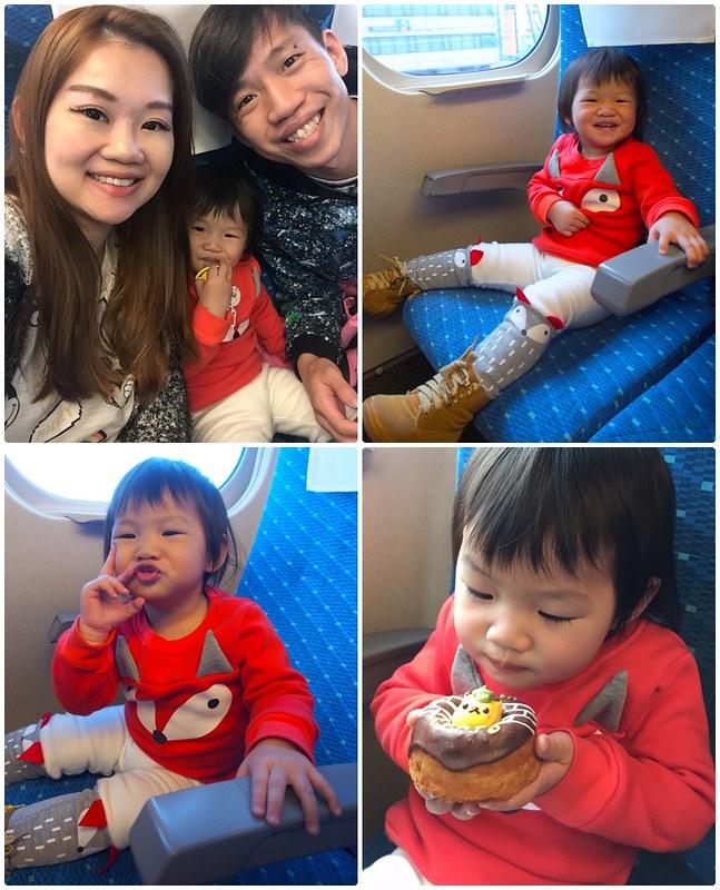Train from Tokyo to Osaka