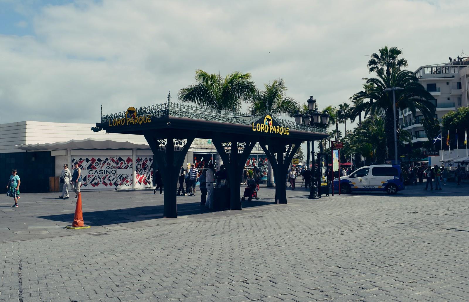 Loro Parque bus stop