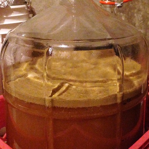 """+41 hours post-pitch. Wouldn't exactly call that krausen """"high"""", but it seems to be a nice and vigorous fermenter just the same. #homebrewing"""