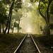 Railway lines leading into fog by Jesmin Palash