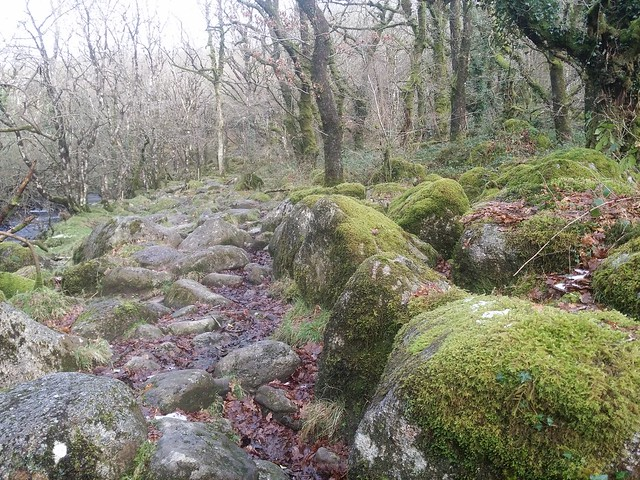 Clambering over clitter along the East Dart