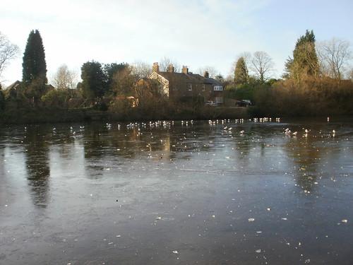 Mere Pond ice