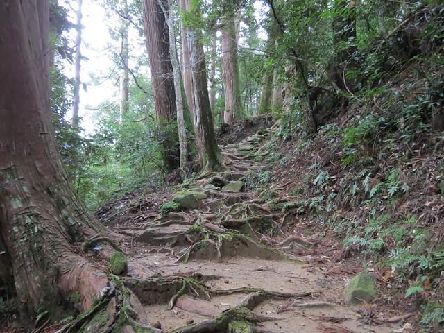Dainichi-goe trail from Kumano Hongu Taisha to Yunomine Onsen