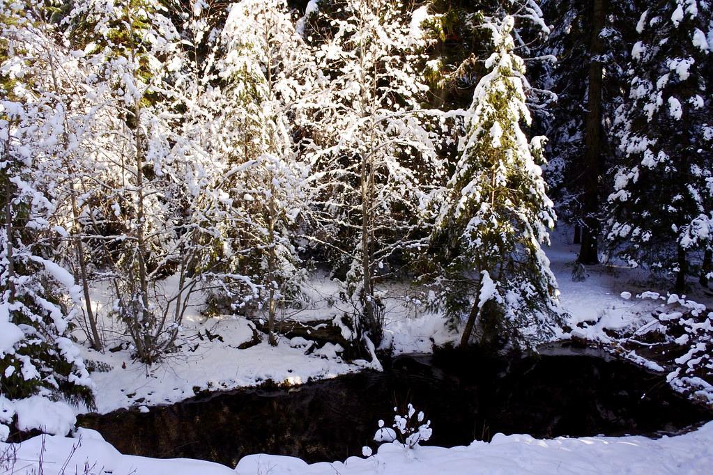 Weeksville Creek